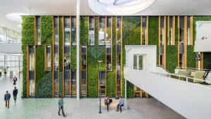 ただの観葉植物じゃ物足りない!海外のユニークなオフィス緑化まとめ